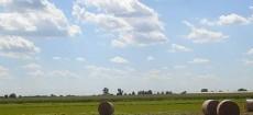 In seguito all'approvazione della recente norma del Governo Monti che autorizza le Regioni e gli Enti locali alla dismissione dei terreni agricoli o a vocazione agricola di proprietà pubblica, finalizzando […]