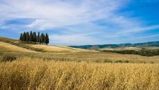 """""""Salviamo il paesaggio e difendiamo i territori"""" è la campagna nazionale promossa dal Forum italiano dei Movimenti per la terra e per il paesaggio con l'obiettivo di ridurre il consumo […]"""