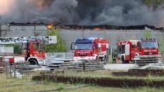 'L'incendio di Migliaro, con le sue conseguenze sanitarie e ambientali, impone un intervento immediato da parte della Regione Emilia-Romagna. Lo afferma la consigliera regionale dei Verdi Gabriella Meo, che in […]
