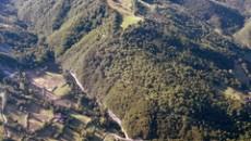 Sulla vicenda del taglio del bosco nelle aree demaniali regionali lungo il torrente Sillaro da parte di una ditta incaricata dal Servizio Tecnico di Bacino Reno, interviene la consigliera regionale […]