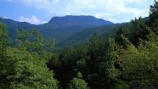 In una nota inviata oggi al Presidente della Regione Emilia-Romagna Vasco Errani, la consigliera regionale dei Verdi Gabriella Meo interviene sulla nomina del Presidente dell'Ente Parco Nazionale delle Foreste Casentinesi, […]