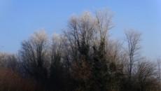 La consigliera regionale dei Verdi Gabriella Meo oggi ha presentato un'interrogazione alla Giunta regionale in relazione alla progettata apertura di una nuova cava di argilla a Sabbiuno di Castel Maggiore, […]