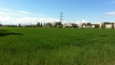 """""""Secondo notizie di stampa, il Comune di Parma ha intenzione di realizzare, assieme all'Ausl, il nuovo polo socio-sanitario Lubiana-San Lazzaro in via 24 Maggio, in una delle ultime aree agricole […]"""
