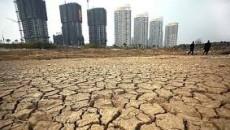 """""""Il suolo è un bene comune e una risorsa non rinnovabile, che esplica funzioni e produce servizi ecosistemici come l'idroregolazione delle piogge, il supporto alla biodiversità, la bellezza e la […]"""