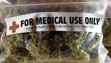 Sabato17 maggio alle ore 11.30, presso il bar del Mambo in via Don Minzoni 14, si terrà una conferenza stampa sul tema dell'uso terapeutico della cannabis. Ne parleremo con: Franco […]
