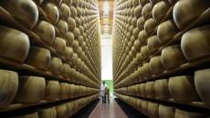 La consigliera regionale dei Verdi Gabriella Meo interviene sulle indagini relative alla contaminazione del latte utilizzato per il Parmigiano-Reggiano che ha portato a quattro arresti e al sequestro di migliaia […]