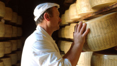 """""""Dobbiamo difendere la salubrità e l'immagine dei prodotti agricoli di eccellenza che l'Emilia-Romagna esporta in tutto il mondo, a cominciare dal Parmigiano-Reggiano. Per questo motivo ritengo chela Regionedebba costituirsi parte […]"""
