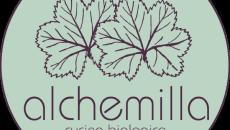 Oggi vi presentiamo 'Alchemilla' un nuovo punto ristoro biologico, vegano, vegetariano a Bologna che vogliamo sostenere per la sua bontà e qualità, buona lettura. Dal sitoalchemillabio.com: A Bologna sboccia un […]