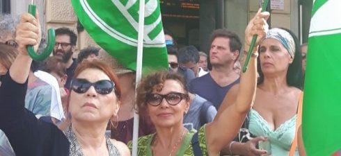Verdi Provincia Bologna Verdi Lugo Verdi Forli Verdi Provincia Rimini Verdi di Modena Verdi di Parma Verdi Carpi