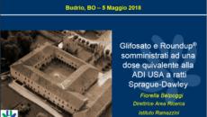 L'intervento di Fiorella Belpoggi per visionare la sequenza di slide in formato PDF, cliccare sul link qui sotto: Belpoggi-Budrio-05052018