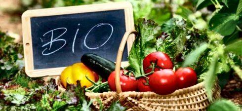 In Emilia Romagna l'agricoltura biologica supera il 15 per cento della superficie agricola, lasciandosi alle spalle l'agricoltura integrata. 152.000 ettari a Biologico in Emilia Romagna, pari al 15 per cento […]